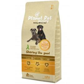 Planet Pet Junior Large Pollo y Arroz