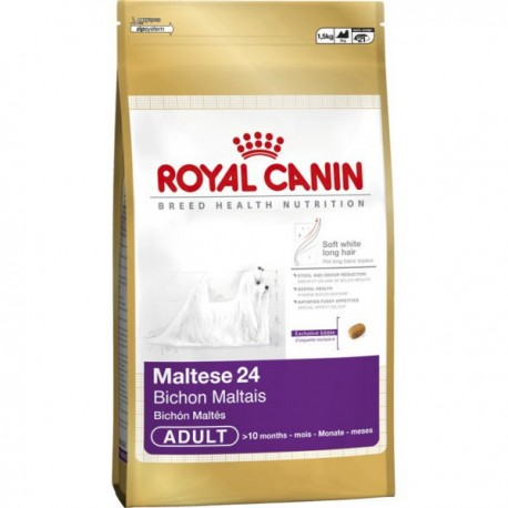 Royal Canin Maltese 24