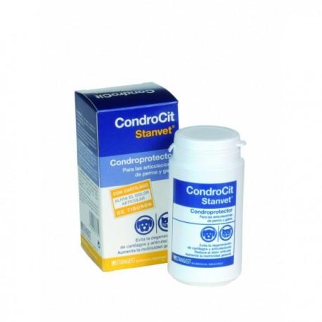 Stangest Condrocit Stanvet - 60 Compr.