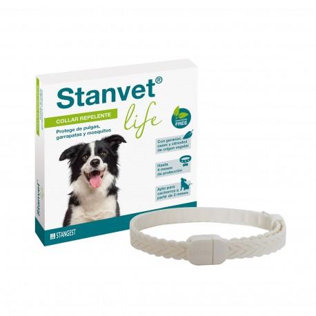 Stangest Collar Stanvet Life Perro