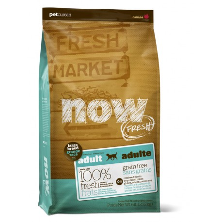 Now Grain Free Large Breed Adult Dog
