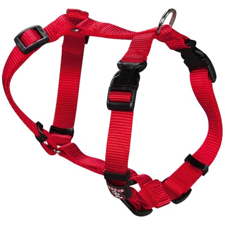 Arnes Nylon Basic Rojo