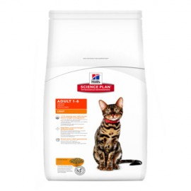 Hills Feline Adult Light con Pollo