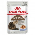 Royal Canin feline Ageing +12 Jelly