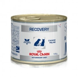 Royal Canin Diet Can/Fel Recovery (12x195gr)