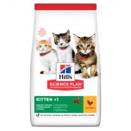 Hills feline kitten pollo