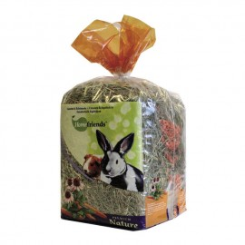 Heno Home Friends zanahoria / equinacea 500g