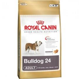 Royal Canin Bulldog 24 12 +