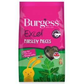 Burgess excel galletas de perejil 80 grs