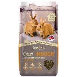 Burgess excel conejo indoor