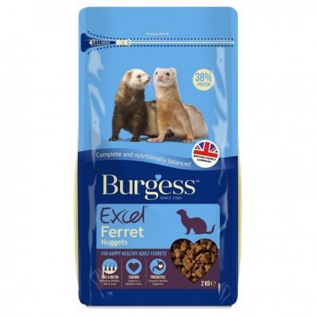 Burgess Excel Hurón