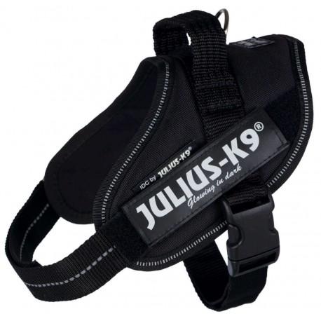 Julius Arnés IDC 0 Negro