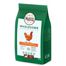 Nutro Wholesome adult med pollo