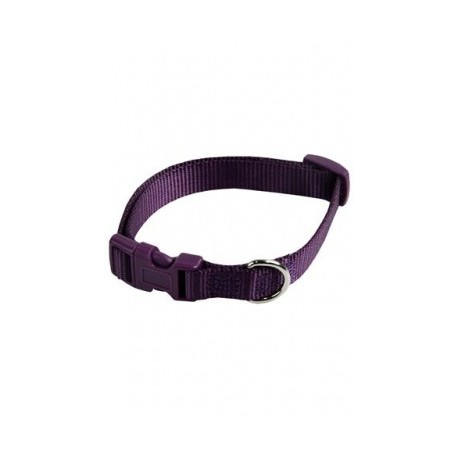 Collar ajustable nylon 10mmx20-30cm, violeta